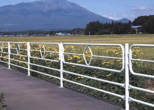 https://www.ns-kenzai.co.jp/image/c1/pabe01.jpg